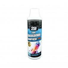 Liquid Glucosamine Chondroitin + MSM (2SN), 500 мл