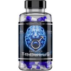 Tribulus 90% (Reg Pharm)  750 мг, 120 капсул